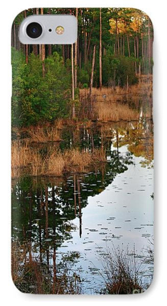Golden Pond IPhone Case by Lori Mellen-Pagliaro