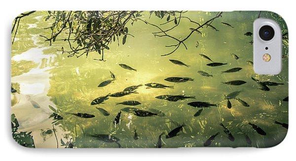Golden Pond With Fish IPhone Case by Menachem Ganon