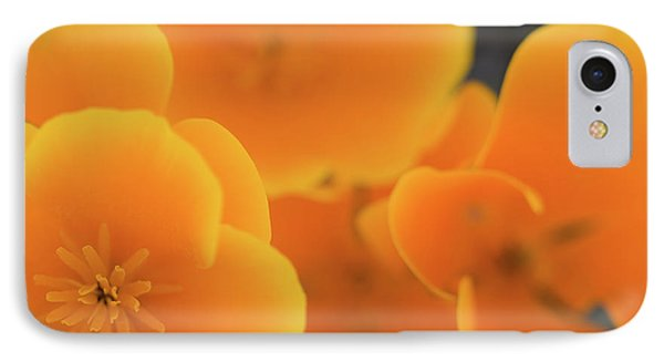 IPhone Case featuring the photograph Golden Poppies by Roger Mullenhour