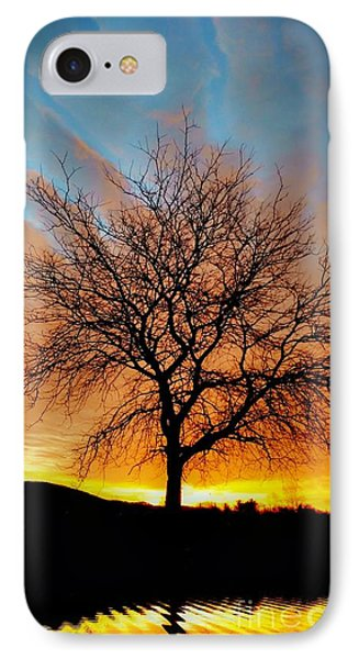 Golden Reflection IPhone Case by Dan Stone
