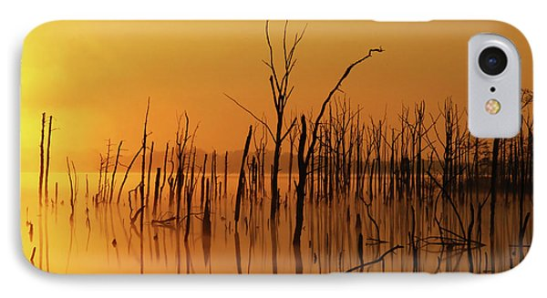 Golden Reflections IPhone Case by Roger Becker
