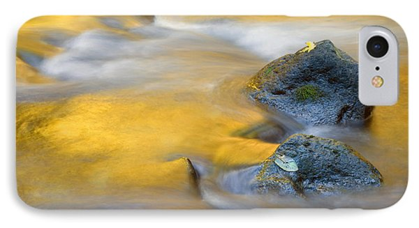 Golden Refuge Phone Case by Mike  Dawson