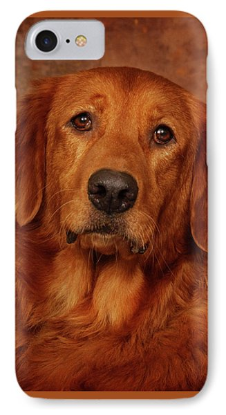IPhone Case featuring the photograph Golden Retriever by Greg Mimbs