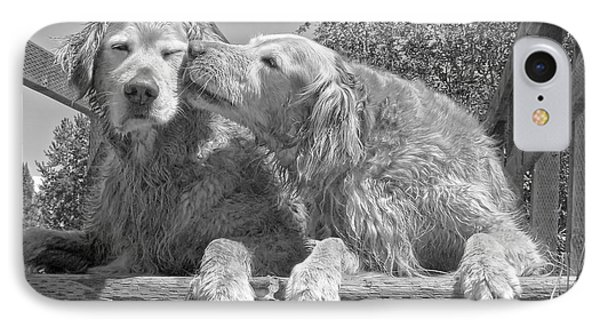 Golden Retrievers The Kiss Black And White IPhone Case by Jennie Marie Schell