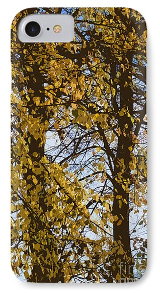 Golden Tree 2 Phone Case by Carol Lynch