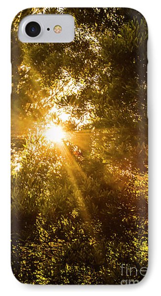 Sunlight iPhone 7 Case - Golden Treetops by Jorgo Photography - Wall Art Gallery