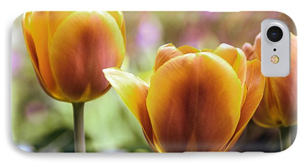 IPhone Case featuring the photograph Golden Tulips by William Havle