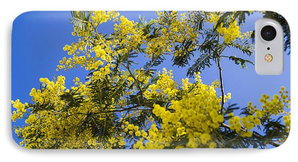 IPhone Case featuring the photograph Golden Wattle by Angela DeFrias