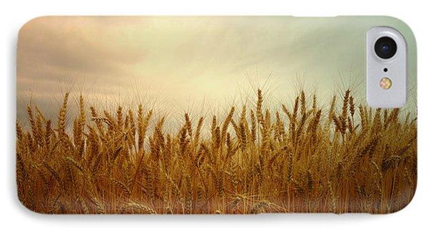 Golden Wheat IPhone Case by Kae Cheatham