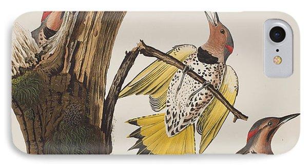 Golden-winged Woodpecker IPhone 7 Case by John James Audubon