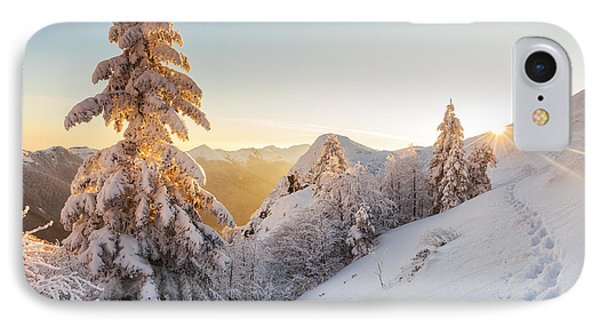 Golden Winter Phone Case by Evgeni Dinev
