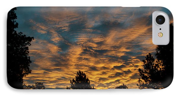 Golden Winter Morning IPhone Case by Jason Coward