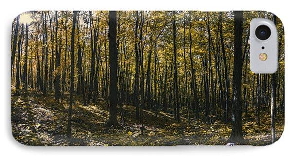 Golden Woods IPhone Case by Scott Norris