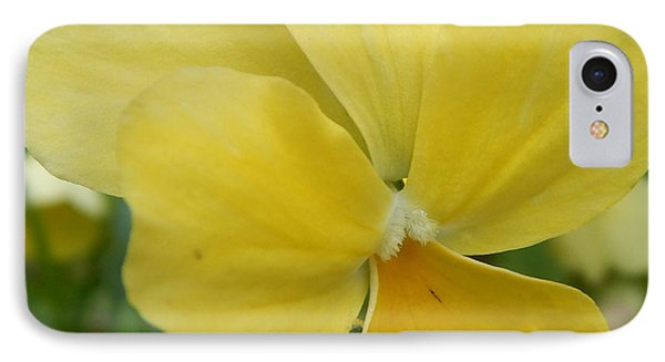 Golden Yellow Flower IPhone Case
