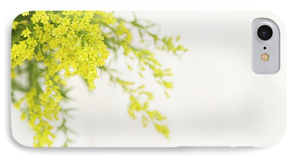 Goldenrod IPhone Case by Anne Gilbert
