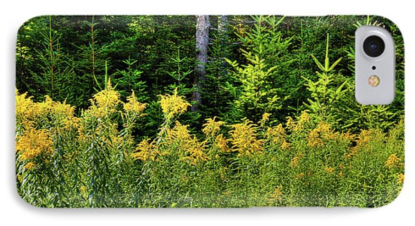 IPhone Case featuring the photograph Goldenrod In The Adirondacks by David Patterson