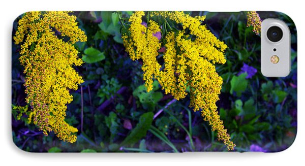 IPhone Case featuring the photograph Goldenrod by Shawna Rowe