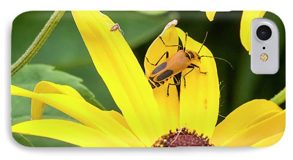 IPhone Case featuring the photograph Goldenrod Soldier Beetle by Ricky L Jones