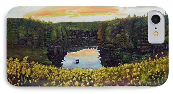 Goldenrods On Davenport Lake-ellijay, Ga  IPhone Case by Jan Dappen