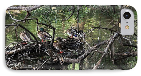 Gone Duck Hunting IPhone Case by Natalie Ortiz