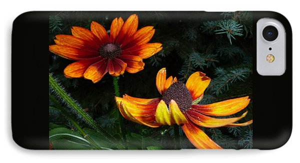IPhone Case featuring the photograph Good Night Susan - Botanical by Margie Avellino
