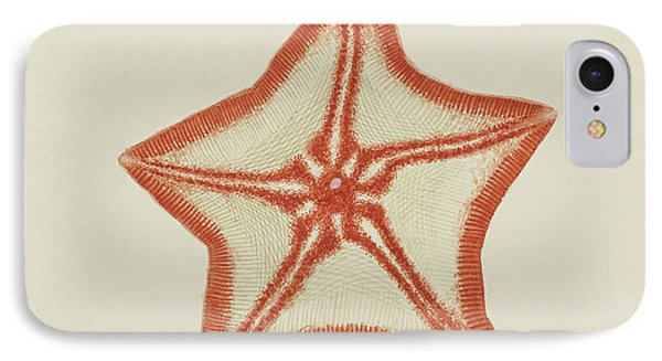 Goose Foot Starfish IPhone Case by Philip Henry Gosse