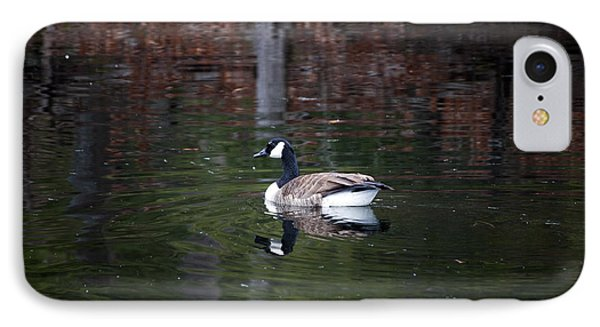 IPhone Case featuring the photograph Goose On A Pond by Jeff Severson