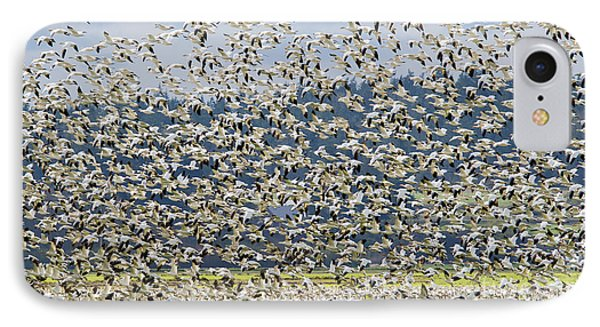 Goose Storm IPhone Case by Mike Dawson
