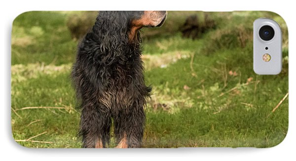 Gordon Setter In The Green IPhone Case by Izzy Standbridge