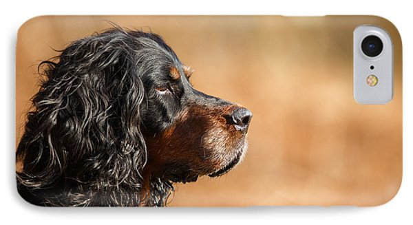 Gordon Setter Portrait IPhone Case by Izzy Standbridge