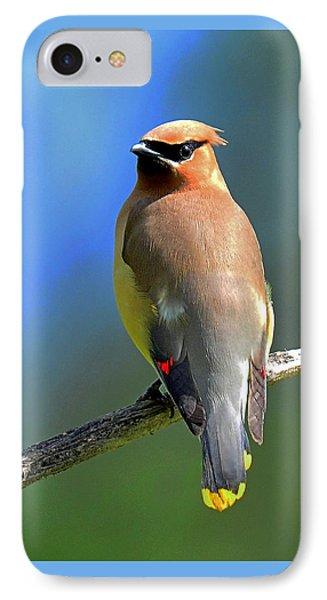 Gorgeous Cedar Waxwing IPhone Case