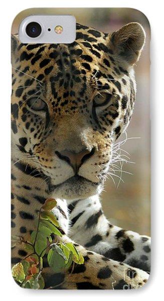 Gorgeous Jaguar Phone Case by Sabrina L Ryan