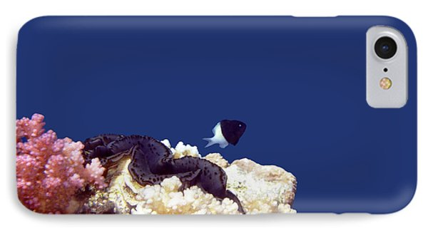Gorgeous Red Sea World 4 IPhone Case