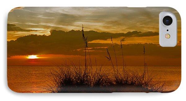 Gorgeous Sunset Phone Case by Melanie Viola