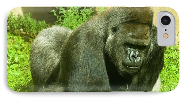 Gorilla IPhone Case by Irina Afonskaya
