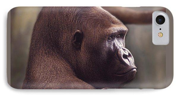 Gorilla Portrait IPhone Case by Greg Slocum