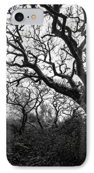 Gothic Woods II IPhone Case by Marco Oliveira