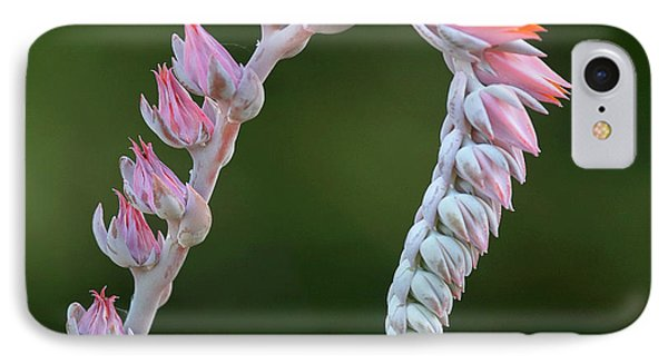 IPhone Case featuring the photograph Graceful by Elvira Butler