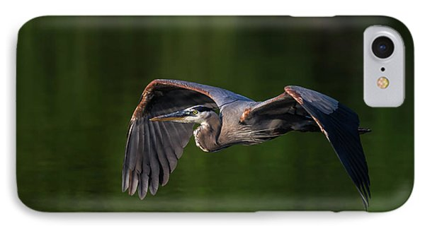 IPhone Case featuring the photograph Graceful Flight by Everet Regal