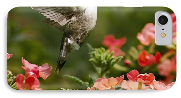 Graceful Garden Jewel Hummingbird Square IPhone Case by Christina Rollo