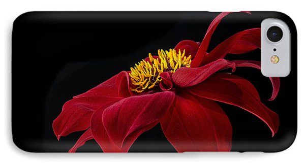 Graceful Red IPhone Case