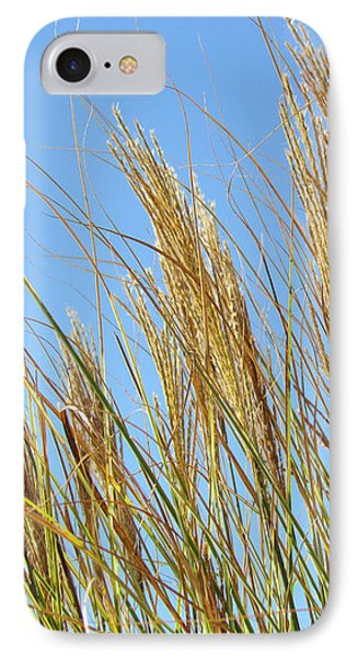Grains Of Grass In The Wind IPhone Case