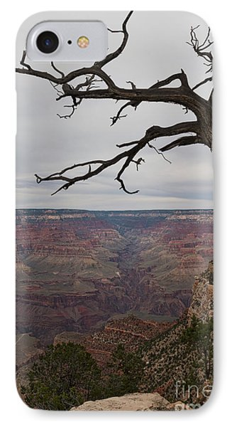 Grand Canyon Branches IPhone Case by Ana V Ramirez
