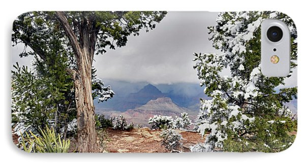 Grand Canyon Through The Trees IPhone Case by Debby Pueschel