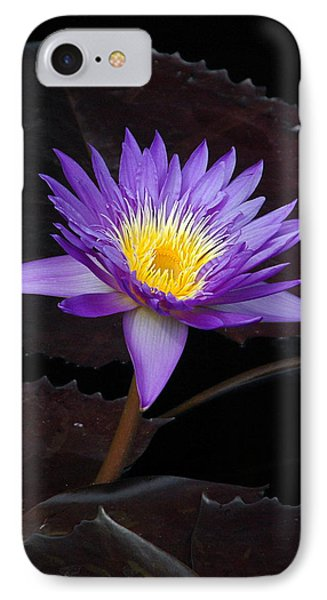 IPhone Case featuring the photograph Grand Entrance by Byron Varvarigos