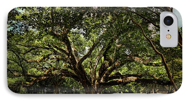 Grand Oak Tree IPhone Case by Judy Vincent