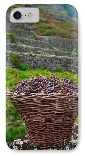 Grape Harvest Phone Case by Gaspar Avila