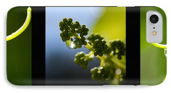 Grape Vines And Water Drops Triptych Phone Case by Lisa Knechtel