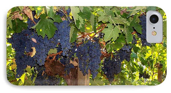 IPhone Case featuring the photograph Grapes Are Ready by Judy Kirouac