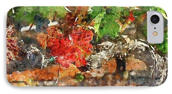 Grapevine In The Autumn Season IPhone Case